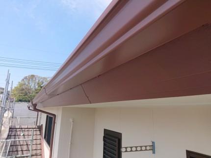 DSC_00842