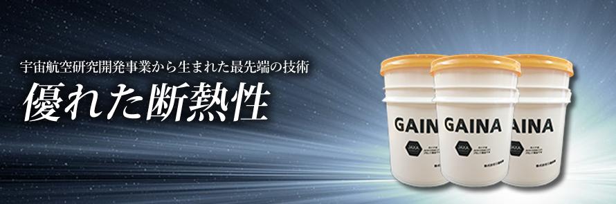 gaina_top