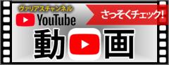 動画 ヴァリアスチャンネル