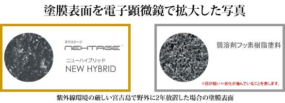 塗膜表面を電子顕微鏡で拡大した写真